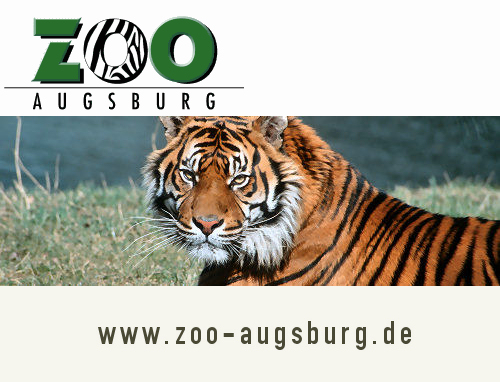 zoo augsburg newsletter. Black Bedroom Furniture Sets. Home Design Ideas